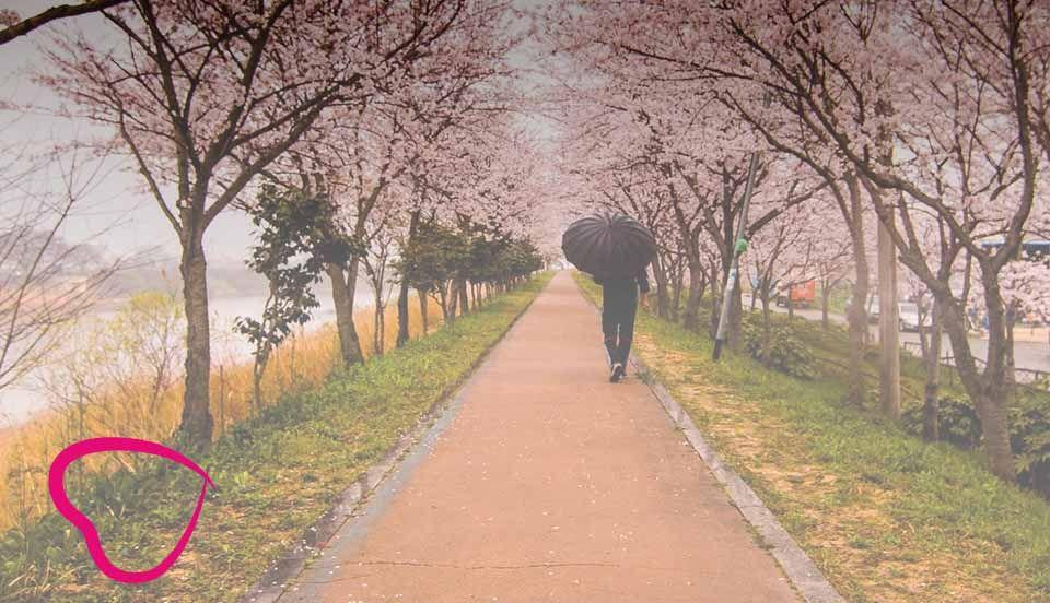 causas de soledad en la tercera edad